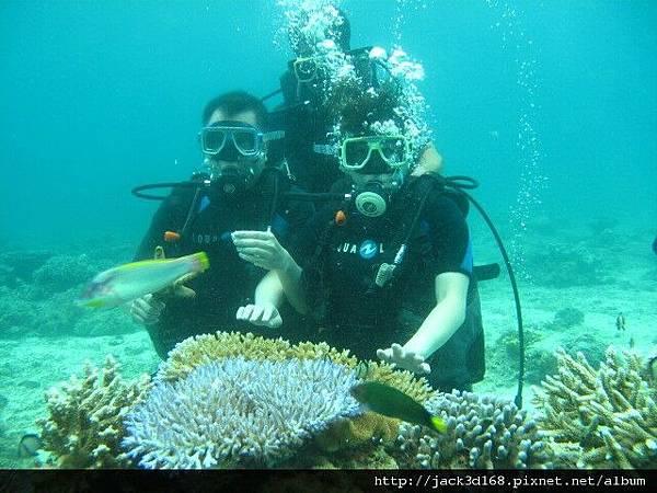 萊行樂_長灘島_體驗潛水3