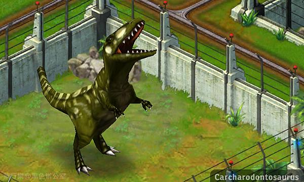 Carcharodontosaurus_鯊齒龍_黑色辦公室
