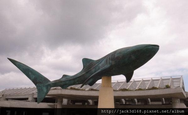 002-30-02-美之海水族館 (302).JPG