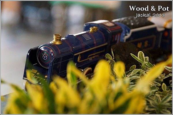 20130124 WoodPot-12