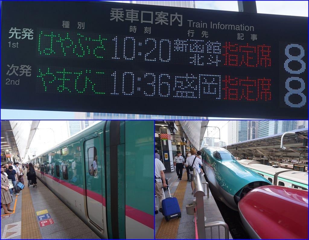 12到東京車站~沿著指標走~終於到達北海道新幹線的乘車處~.jpg
