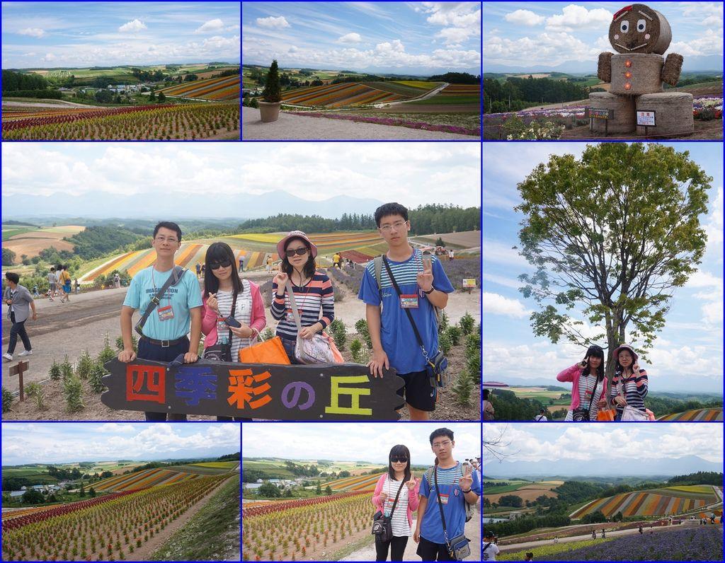 13四季彩之丘~花田就位於美瑛町美麗的丘陵地上.jpg
