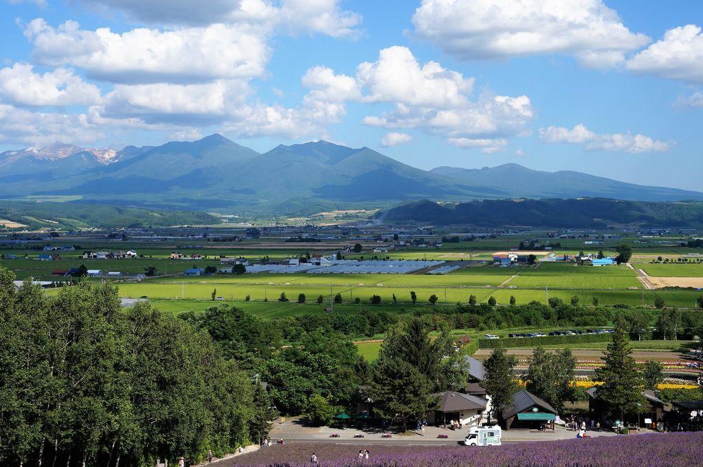 23從富田農場最高點拍攝的景色.JPG