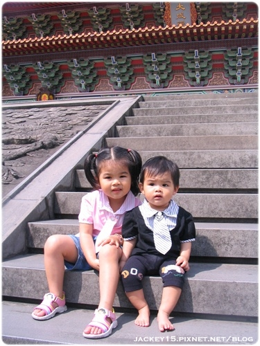 IMG_5293-20090331.JPG