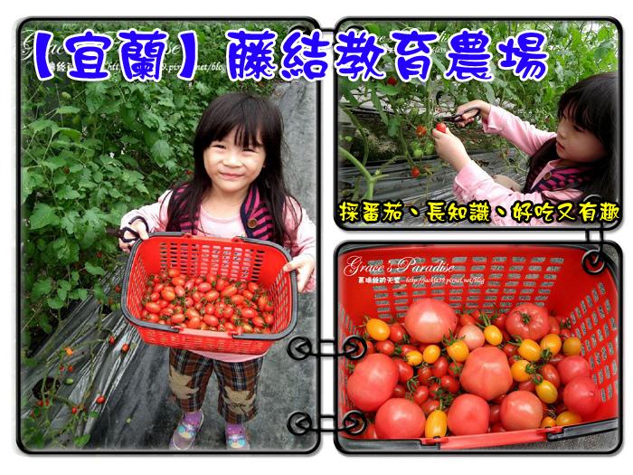 DSCF1594_nEO_IMG拷貝.jpg