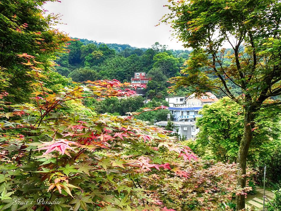 台北奧萬大 (45).jpg