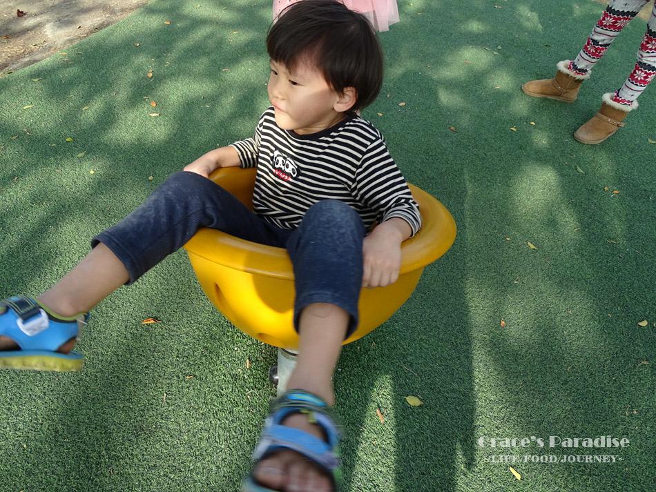 嘉義特色公園 (37).jpg