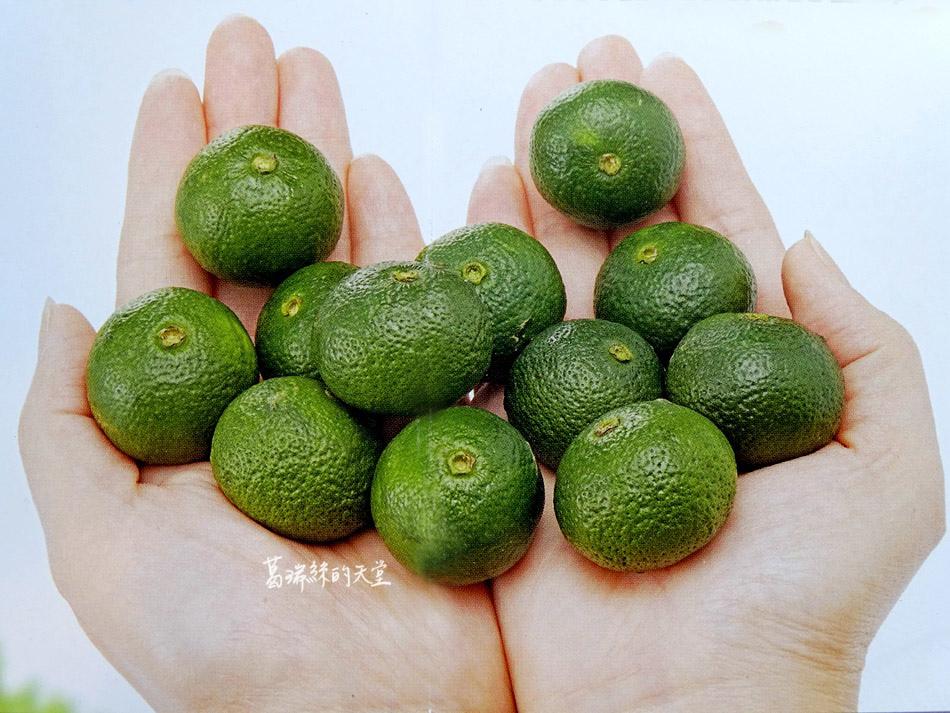 香檬園-香檬原汁香檬氣泡水 (17).jpg