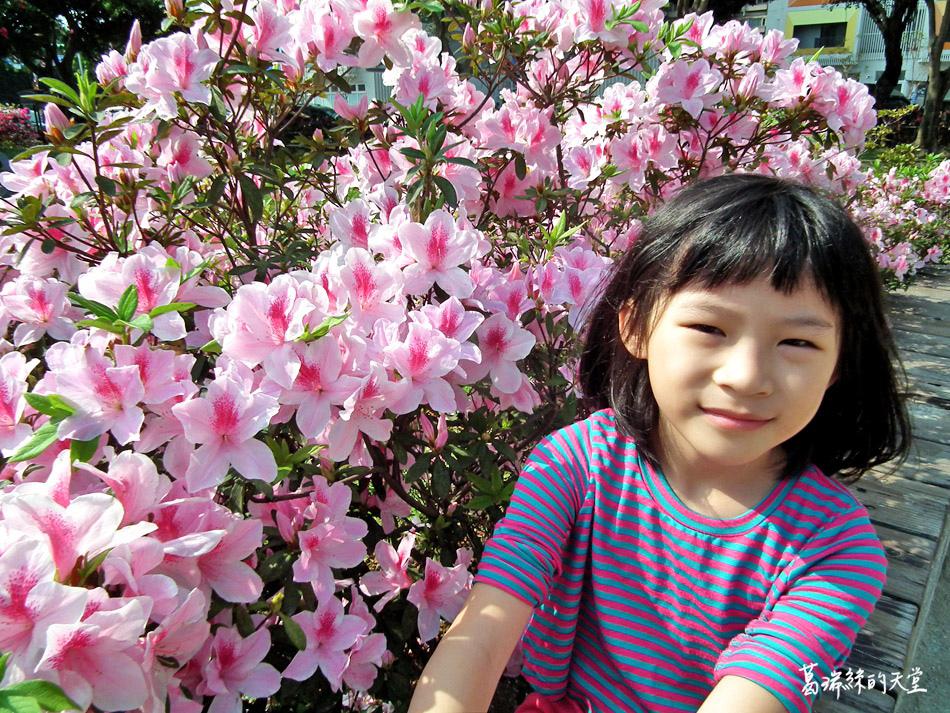 台北景點-青年公園-交通公園教學區 (12).jpg