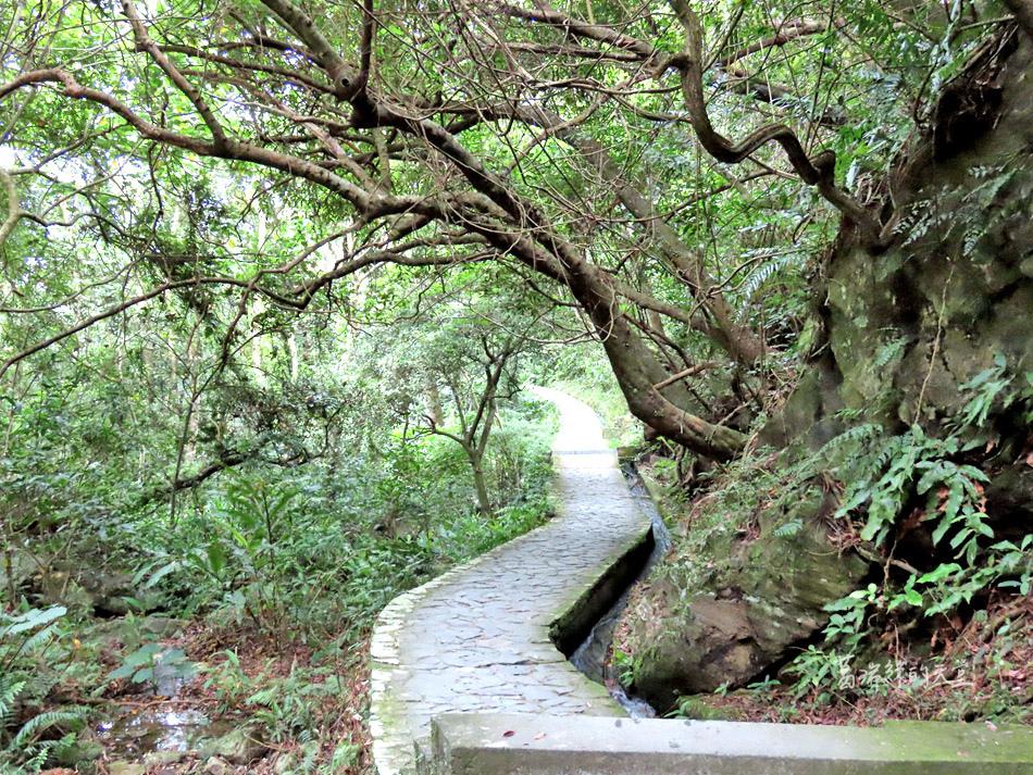 礁溪一日遊-猴洞坑瀑布 (5).jpg