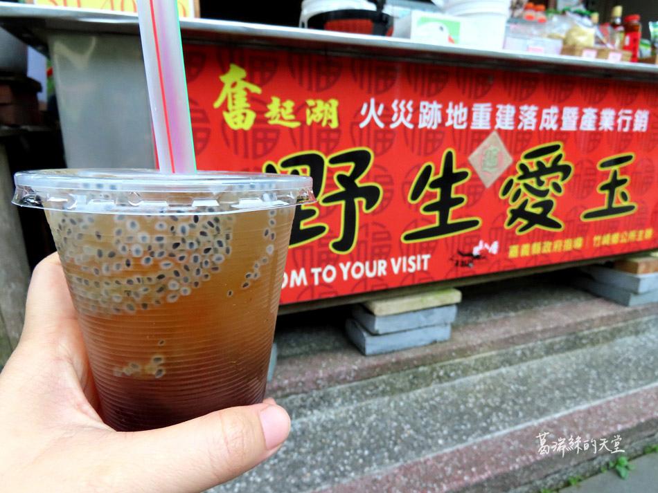 嘉義景點-奮起湖老街 (48).jpg