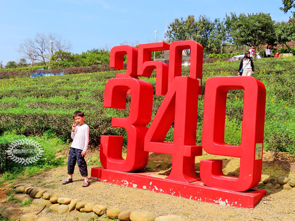 2020戀戀魯冰花 (23).jpg