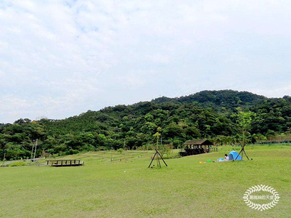 南港特色公園-山水綠生態公園 (15).jpg