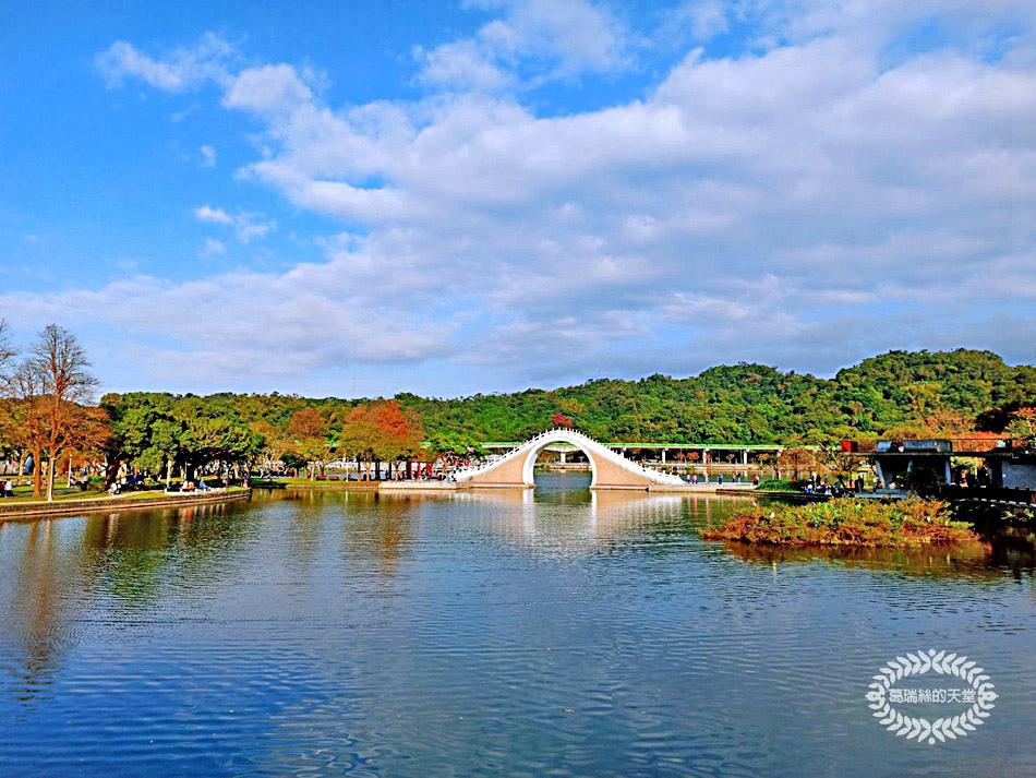 內湖景點-大湖公園 (1).jpg