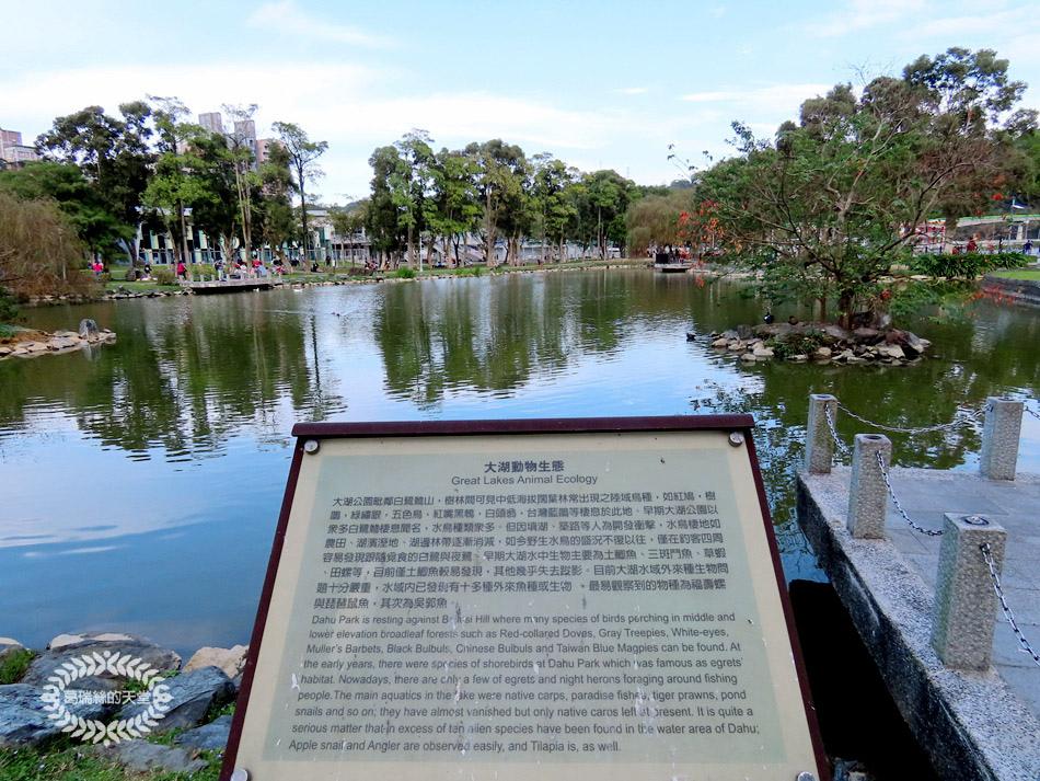 內湖景點-大湖公園 (12).jpg