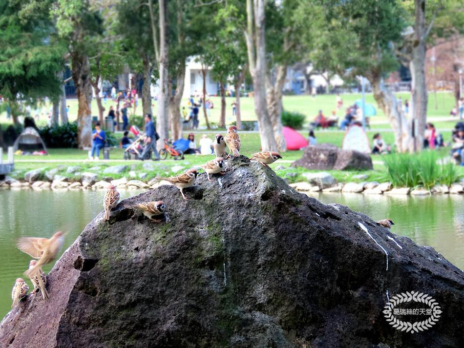 內湖景點-大湖公園 (17).jpg