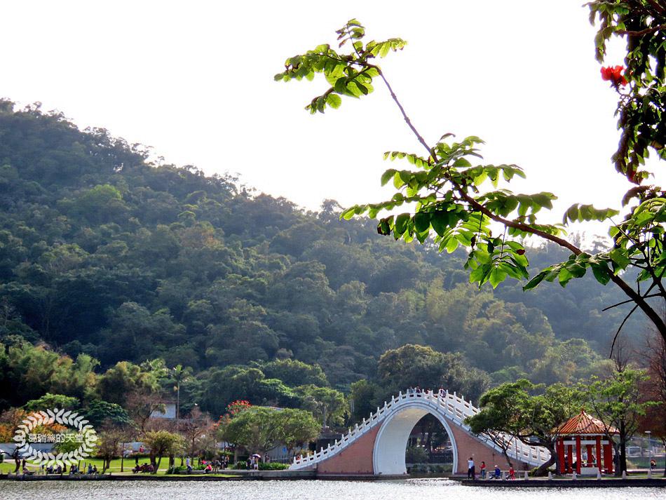 內湖景點-大湖公園 (33).jpg
