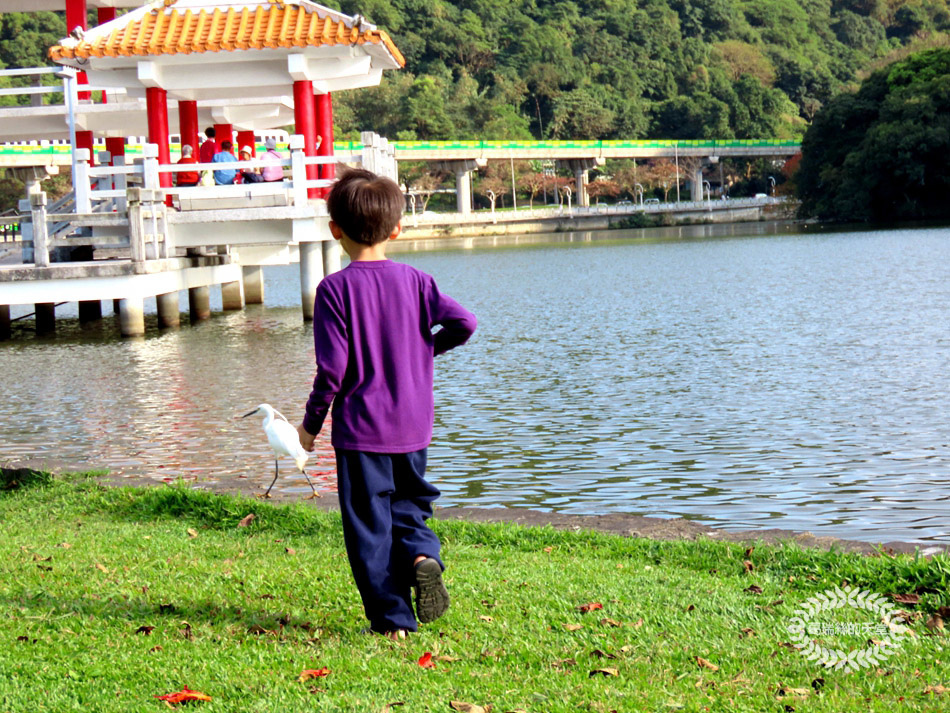 內湖景點-大湖公園 (34).jpg