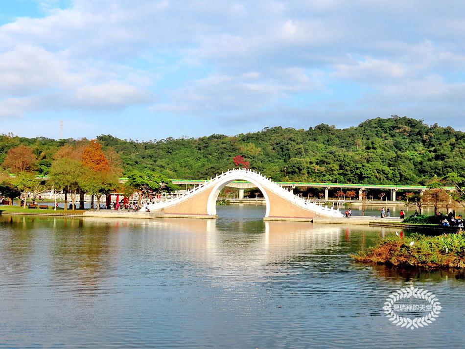 內湖景點-大湖公園 (45).jpg