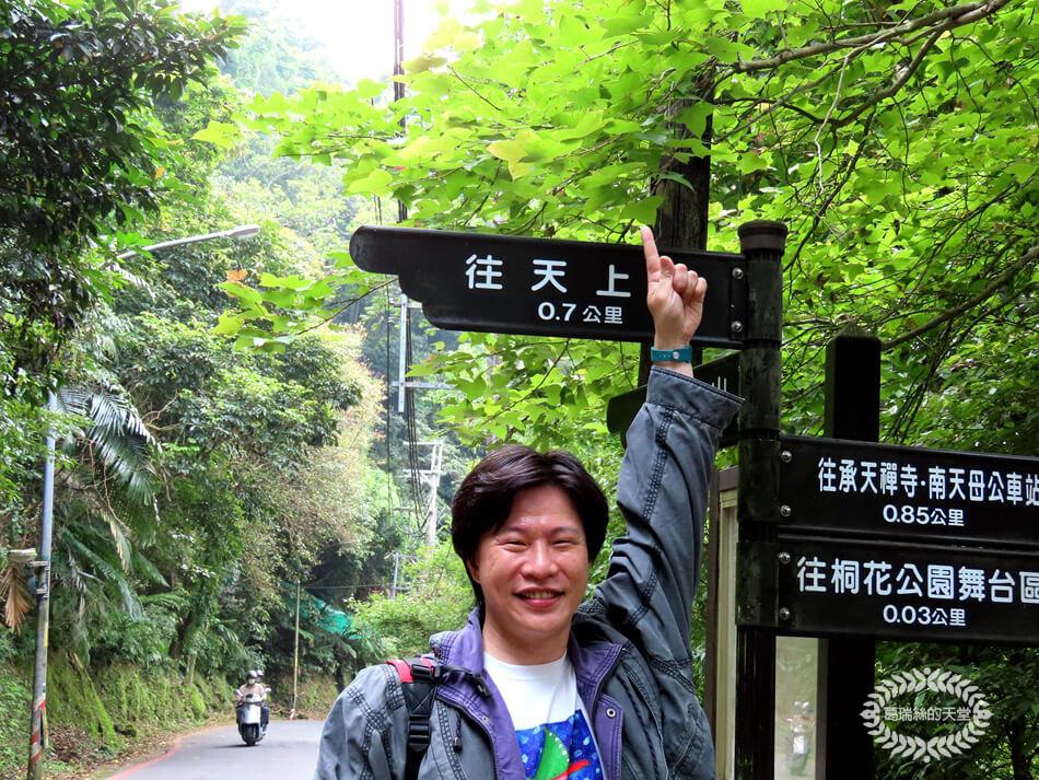 土城景點-桐花公園 (8).jpg