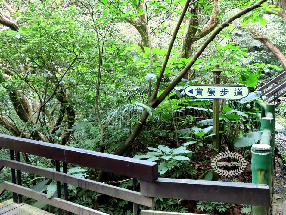 土城景點-桐花公園 (14).jpg