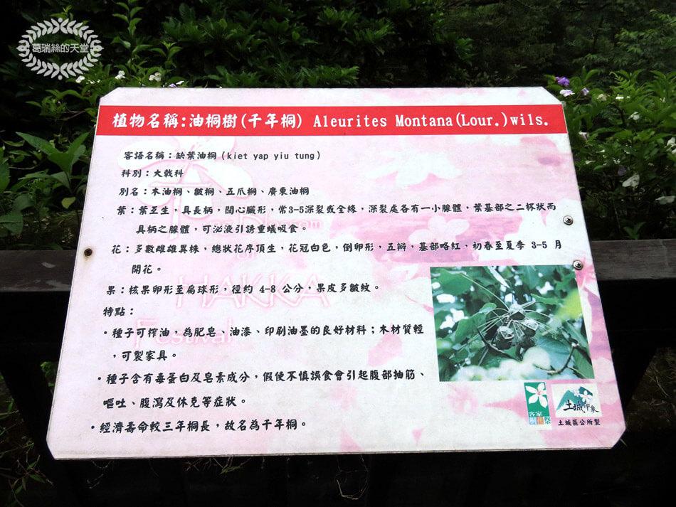 土城景點-桐花公園 (36).jpg