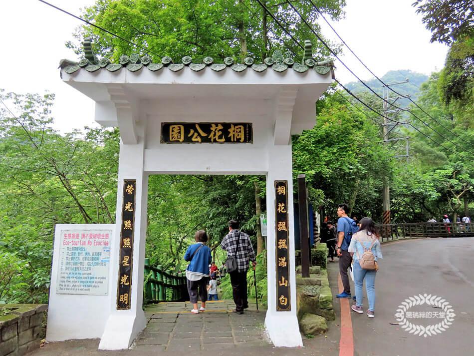 土城景點-桐花公園 (40).jpg
