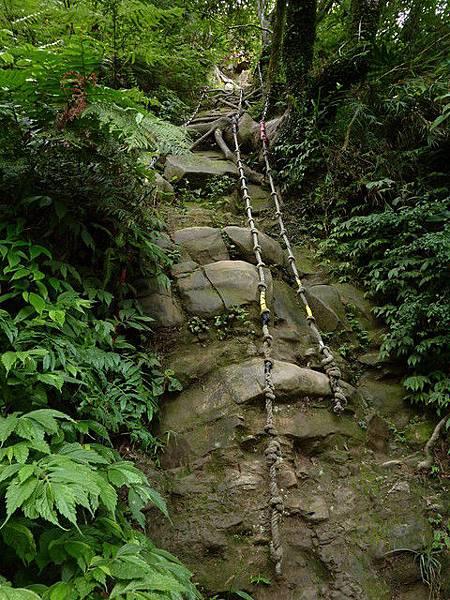 南港山崖壁