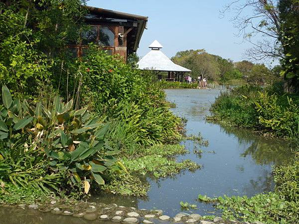八德埤塘生態公園5