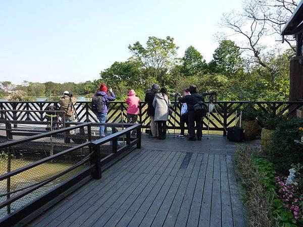 八德埤塘生態公園4