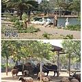 新竹六福村15