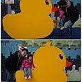 基隆黃色小鴨8