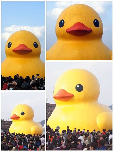基隆黃色小鴨11