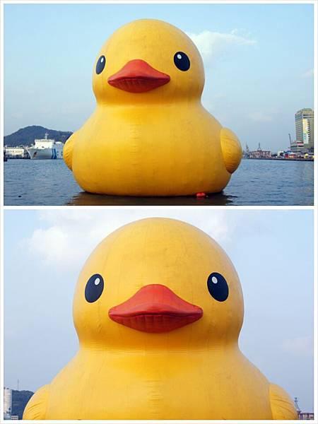 基隆黃色小鴨12