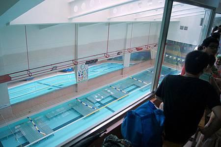1040614YMCA游泳7