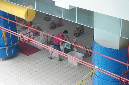 1040614YMCA游泳11