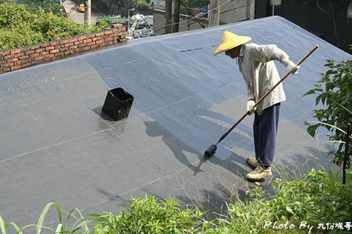 屋頂上畫師2.jpg