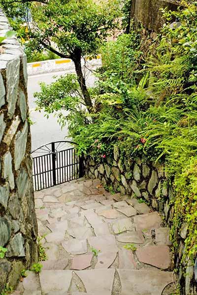 庭園-7.jpg