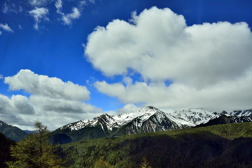 梅里雪山 (7).JPG