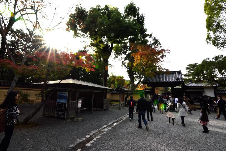 金閣寺 (10).JPG