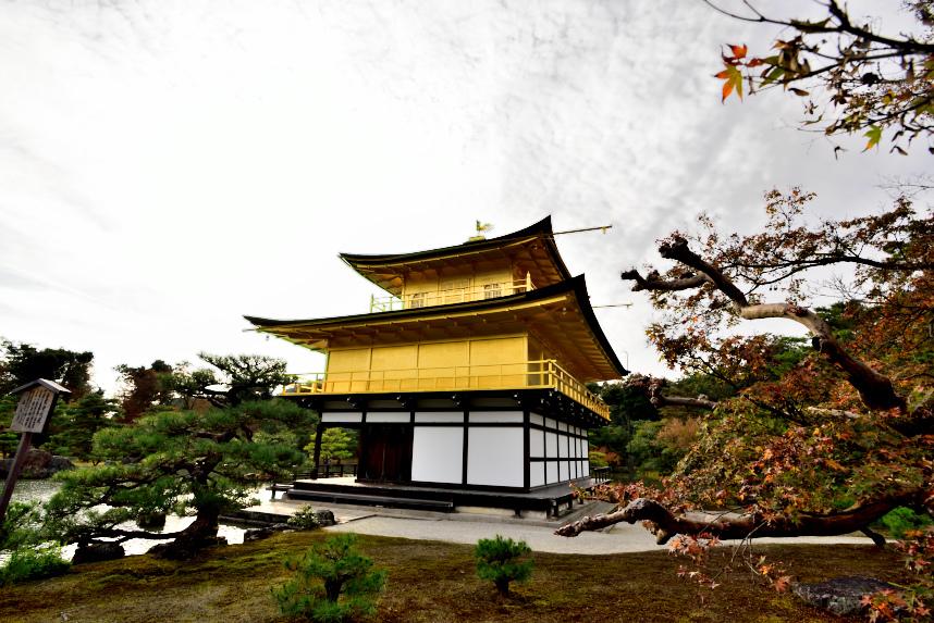 金閣寺 (21).JPG