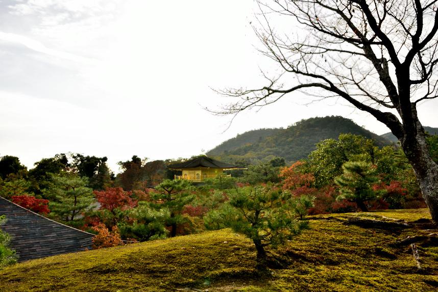 金閣寺 (28).JPG