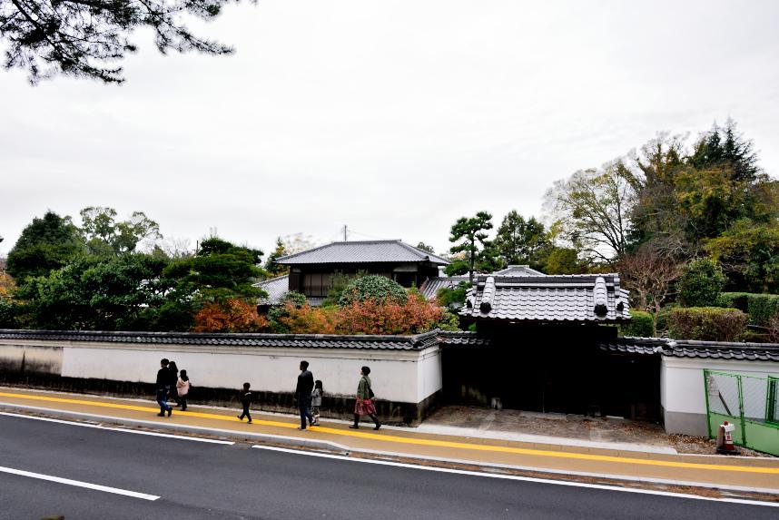 奈良 (5).JPG