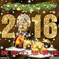 S__20783303.jpg