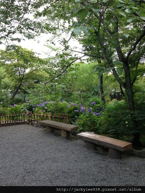 Japan-188.jpg