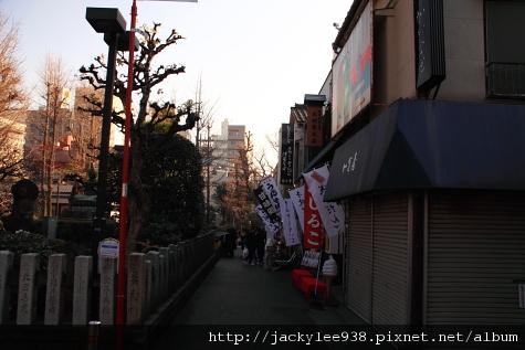 IMG_4339.JPG