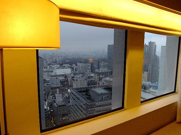 01-16-京王飯店-37樓窗外景色.JPG
