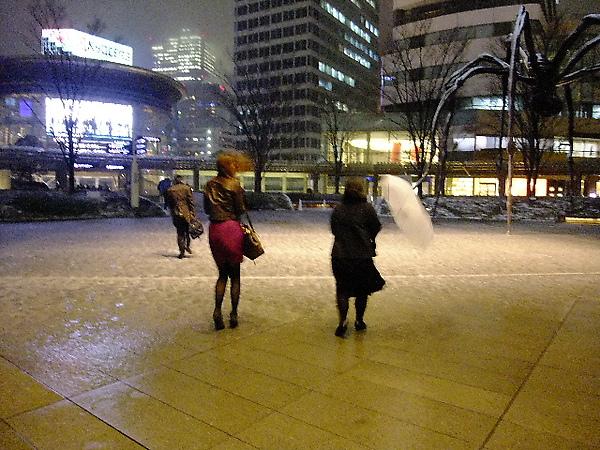 04-17-晚餐後風雪愈下愈大.JPG