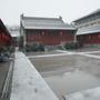 10-早飯後 去外面淋淋雪看看02.jpg