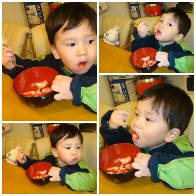 諾寶吃草莓.jpg